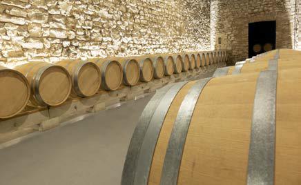 DU gestion et management des entreprises vitivinicoles