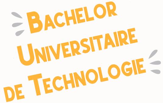 Bachelor Universitaire de Technologie - IUT de Tours